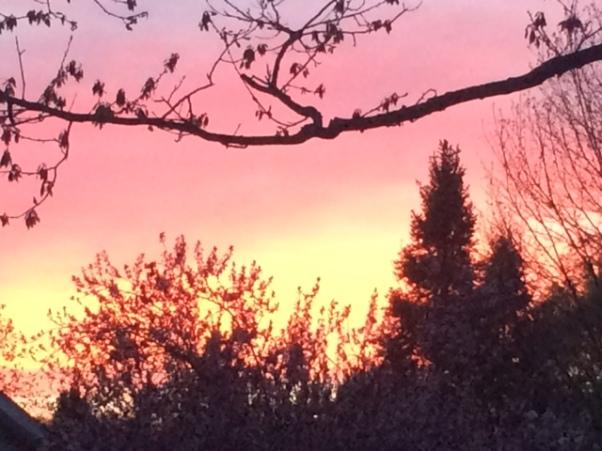 b firey sunset